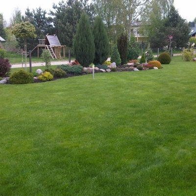 Vejos, teritorijų, augalų priežiūra